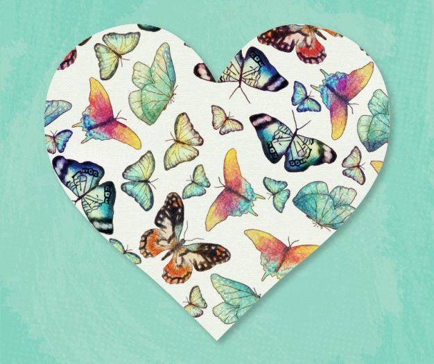 ilustrasi kupu-kupu