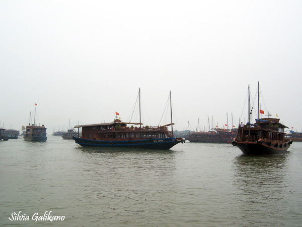 teluk ha long, ha long bay, halong bay, vietnam