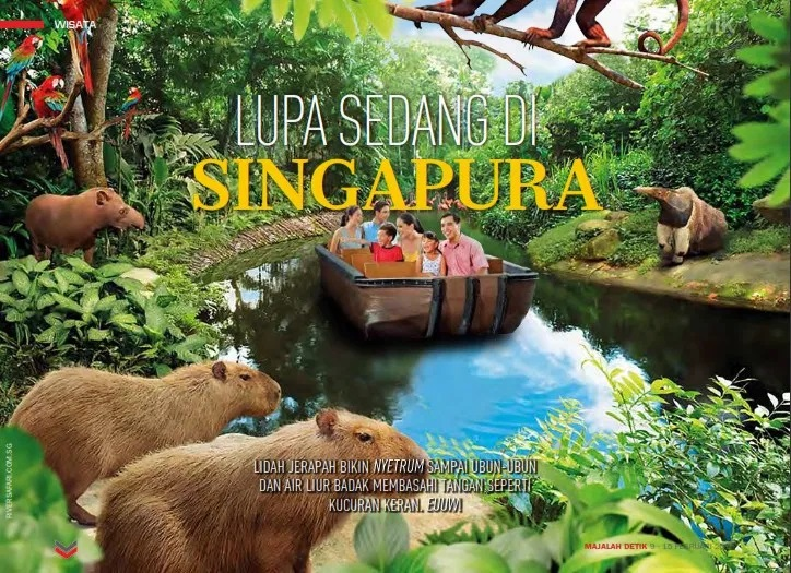 wildlife singapore, margasatwa singapura